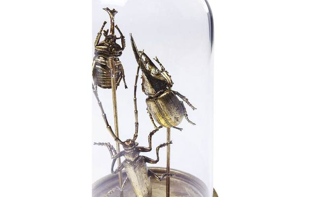 Stolp insect in stolp goud wit glas - 8180267-02